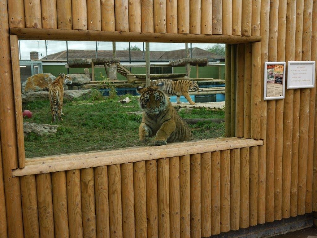 Lincolnshire Wildlife Park - 1