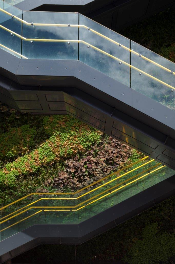 Structural Glass - Walkway